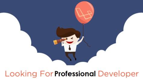 Professional Developer